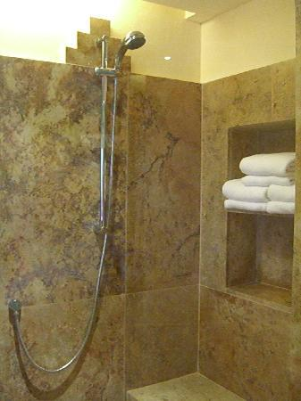 Excellence Playa Mujeres: the shower is huge!  the size of my entire master bath at home!