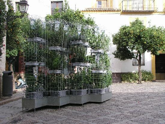 vista del jardin vertical con el sistema de riego por