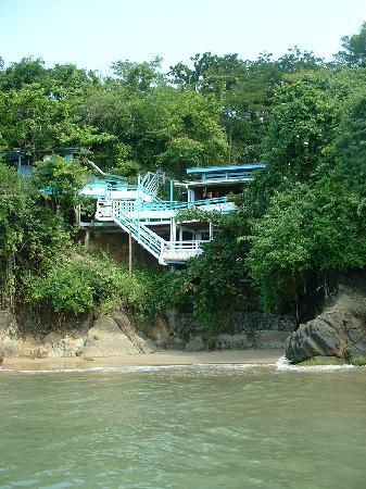 Blue Mango: Sea Steps from the sea