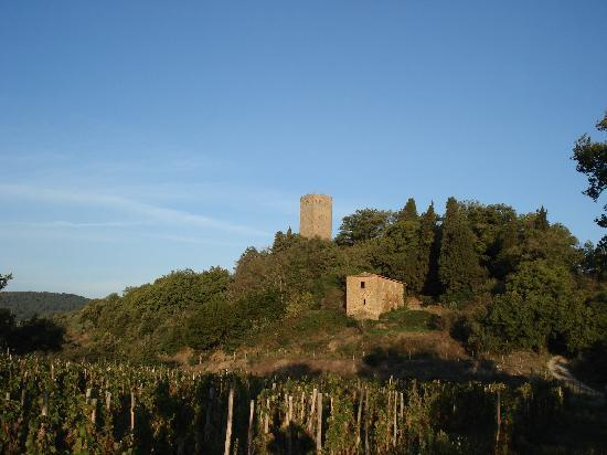 Petrolo: Galatrona Tower on hilltop behind Costa