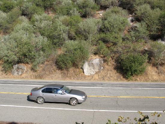Yosemite View Lodge: Our 'Mountain View'