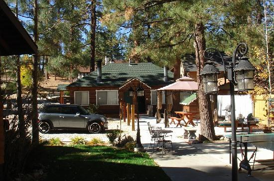 Timber Haven Lodge : Our Cabin #4 (Door to the right)