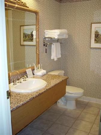 Holiday Inn Express & Suites Elko: Bathroom