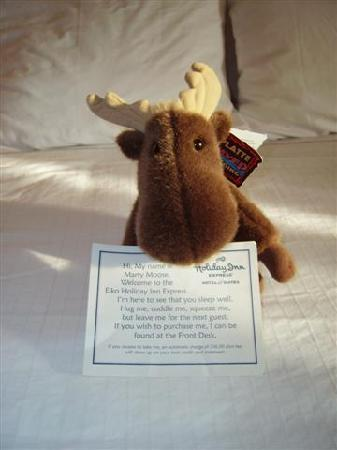 Holiday Inn Express & Suites Elko: Moose to keep you company :=)