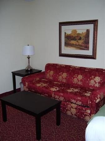 Holiday Inn Express Hotel & Suites Vandalia: Living Area