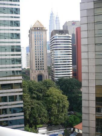 Seri Bukit Ceylon Residences : Green tree view from my room