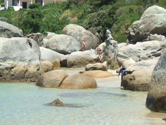 Cosimi Guest House: The famous Boulders Beach