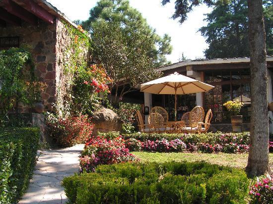Rancho San Cayetano: Enjoy big and colourful garden
