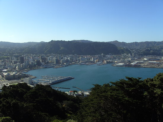 Wellington, New Zealand: View from Mount Victoria