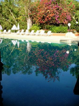 Les Bougainvillees : Hotel pool