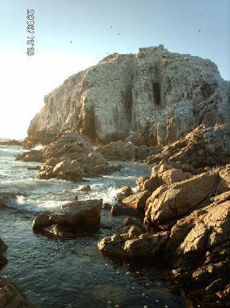 Playa Canelo: El Peñon - Algarrobo, Chile