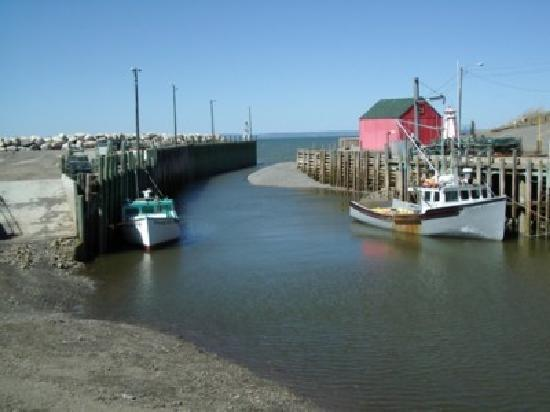 Annapolis Valley: Hall's Harbour, at half tide