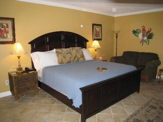 Villa Venice Men's Resort: King Bed -- Room 35