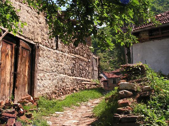 Blagoevgrad Province, Bulgaria: Old houses
