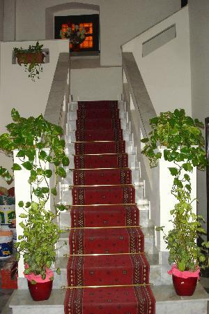 Harmony Bed and Breakfast: The imposing hall staircase