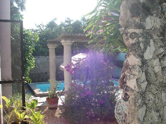 Casa Santiago: backyard garden and pool