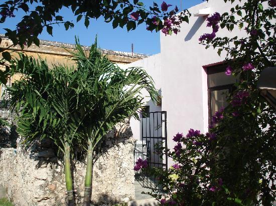 Casa Santiago: backyard