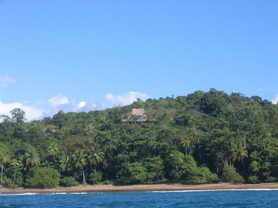 Aguila de Osa Inn: back from the beach