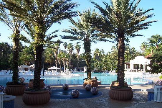 Hard Rock Hotel at Universal Orlando: view of pool