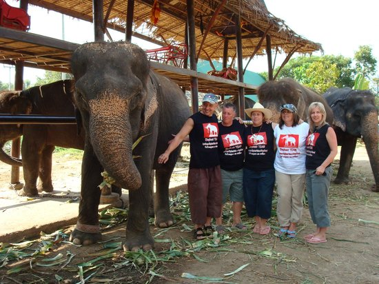 Elephantstay : elephant team members with LoongSap