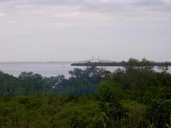 Palmetto, Floride : view of Sunhine Bridge