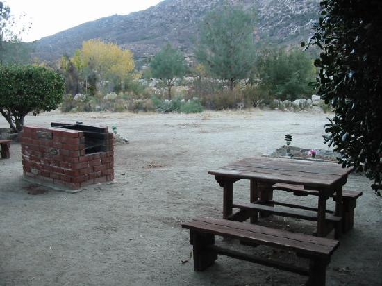 Falling Waters River Resort: BBQ and Picnic Area