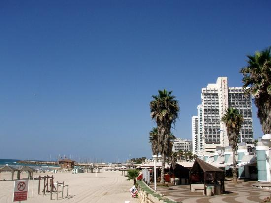 Carlton Tel Aviv S Beach With The In Background