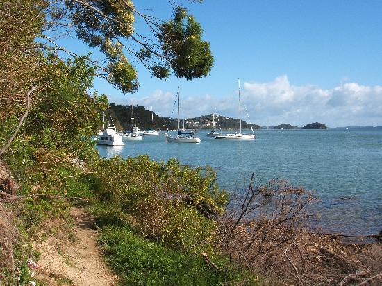 Cliff Edge by the Sea: Walk to Pahia