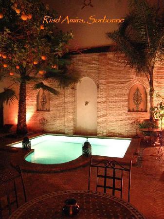 Riad Amira : piscine