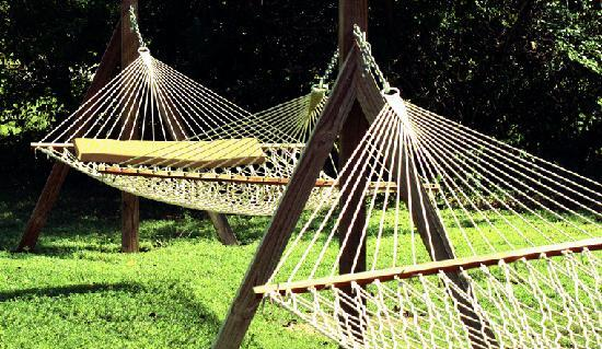 Tropical Dreams Rentals: hammocks in the gardens