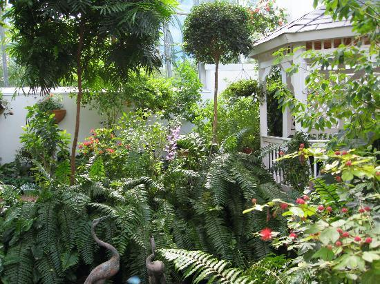 Beautiful Garden - Picture of Key West Butterfly and Nature ...