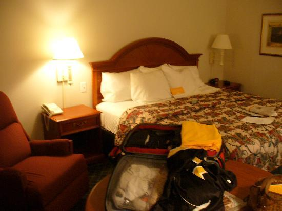 La Quinta Inn & Suites North Platte: Bed was very comfortable