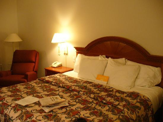 La Quinta Inn & Suites North Platte: Nice room