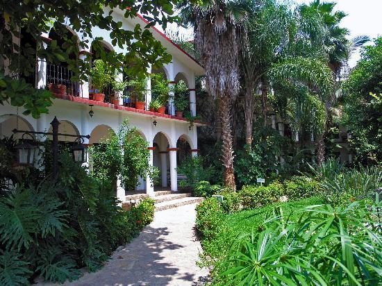 Chiapa de Corzo, المكسيك: La Ceiba