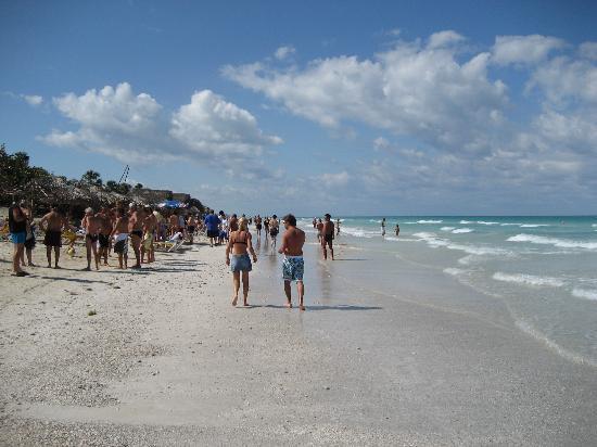 Iberostar Varadero: beach - plage