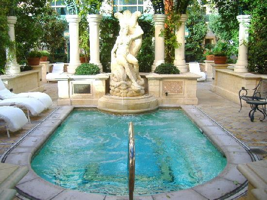 14 person jacuzzi in the venezia pool gardens picture of for Pool and patio show las vegas