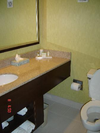 Jameson Suites Augusta: the bathroom
