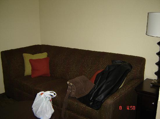 Jameson Suites Augusta: big sofa in the room