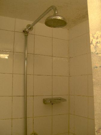 Manor Court Hotel : room 29 - is this a shower?