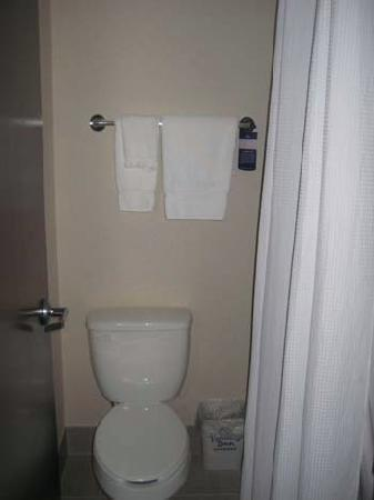 Holiday Inn Express Rochester - Greece: bathroom