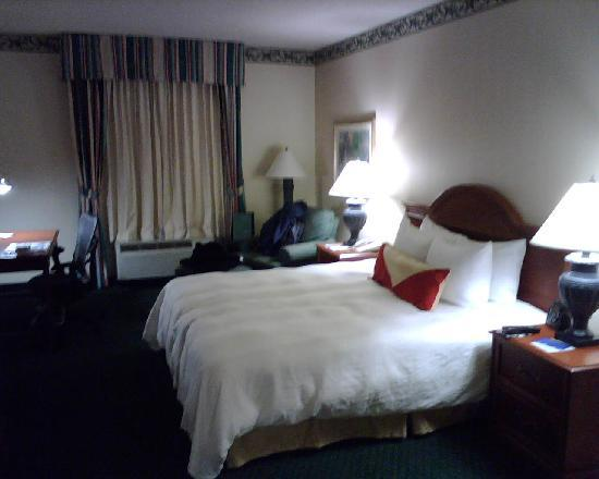 Hilton Garden Inn Rock Hill: Room