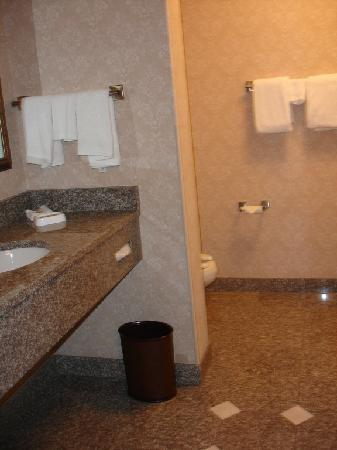 Drury Inn & Suites Columbus Grove City: beautiful bathroom