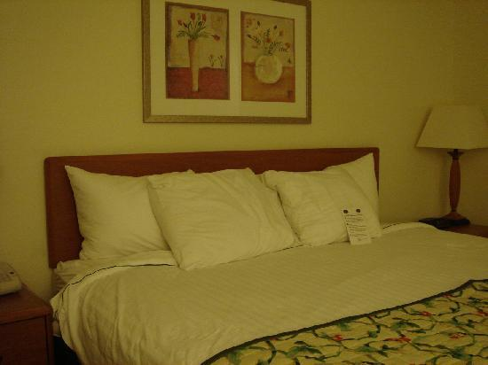 Fairfield Inn Zanesville: King Size Bed