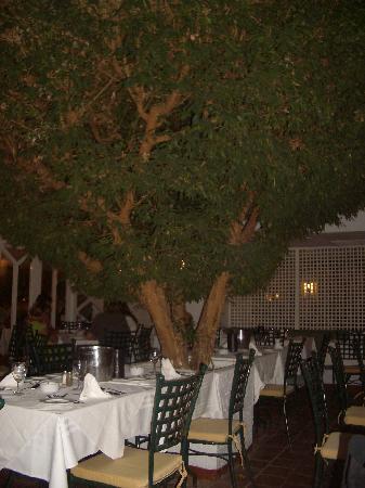 Hammamet Resort: salle à manger
