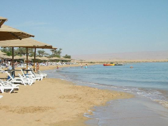 Stella Di Mare Sea Club Hotel, Ain Sukhna: The beach next to Stella Di Marie