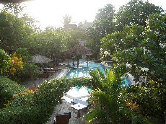 Puri Kelapa Garden Cottages : Pool im Hotel
