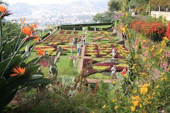 Madeira Botanical Garden : Botanic view