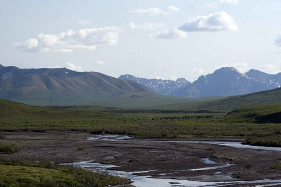 Denali National Park and Preserve, AK: Vast tundra