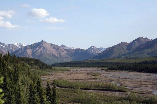 Denali National Park and Preserve, Αλάσκα: Looking down at bridge in Denali