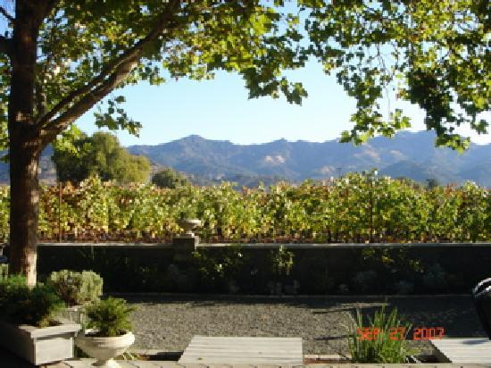 Chateau de Vie: Gorgeous view from back yard